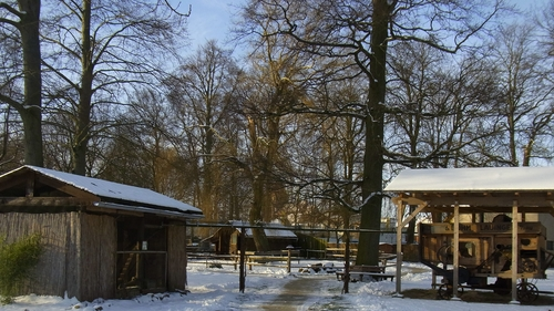 Bild Tierpark Winter 1